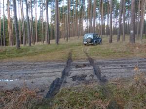 leśnicy jeżdża w poprzek dróg